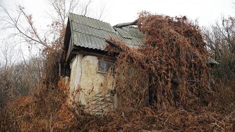 Заброшенные хутора: как пустеют воронежские деревни. Хутор Широкий
