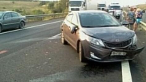 За сутки на воронежских дорогах случилось 156 ДТП