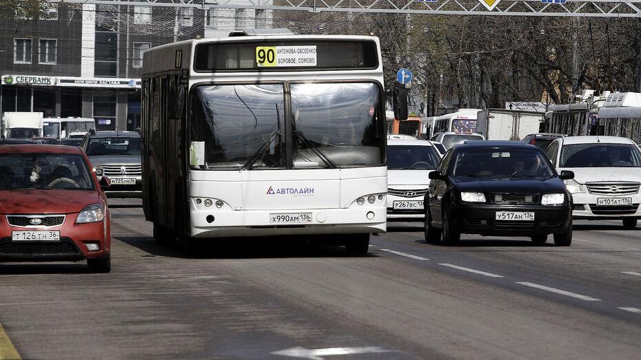 За 7 ночей нанесут разметку для выделенки на улице Плехановской в Воронеже