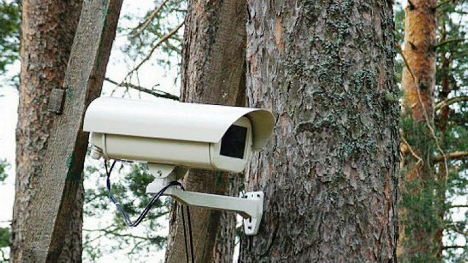 В Поворинском районе появились пункты видеонаблюдения за пожарами