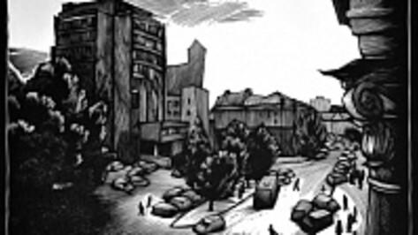 Воронежцы получат по 100 тыс рублей на комиксы по Платонову и книгу  о птицах