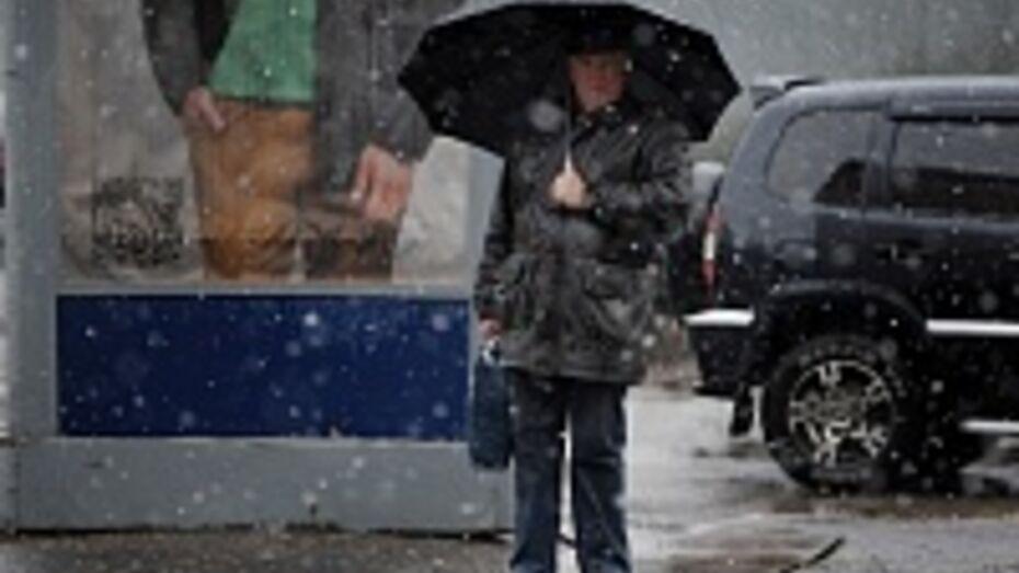Погода в Воронеже испортится в воскресенье
