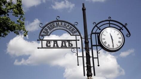 В Бринкманском саду Воронежа построят дворец бракосочетаний