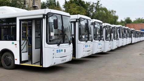 В Воронеже «народные» автобусы заработают на пяти коммерческих маршрутах