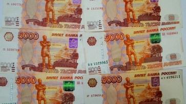 Директор воронежской фирмы «КДМ-опт» ответит в суде за хищения из бюджета 29 млн рублей