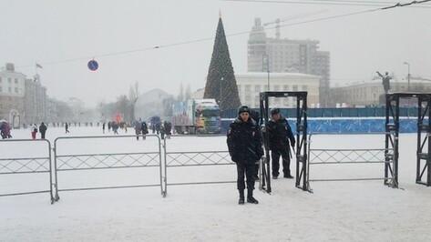 Вокруг главной елки Воронежа появятся металлодетекторы