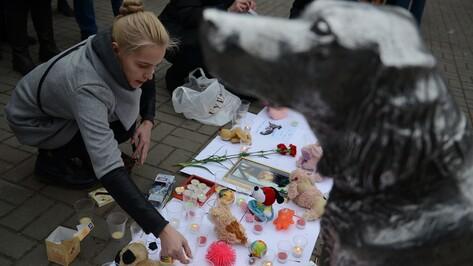Воронежцы зажгли свечи в память об убитых хабаровскими живодерками животных