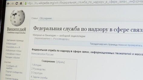 Один день без Википедии. Как Воронеж отключали от всемирной энциклопедии