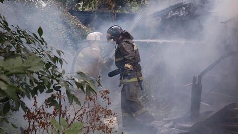 Вероятной причиной пожара в лискинском селе стал поджог