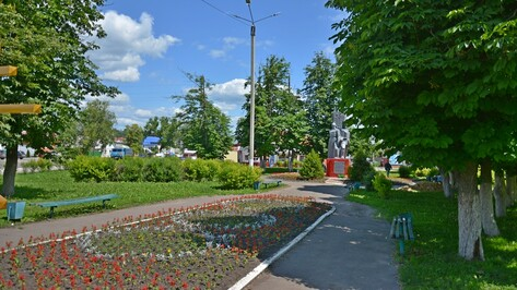 В Острогожском районе 6 ТОСам выделят гранты на благоустройство