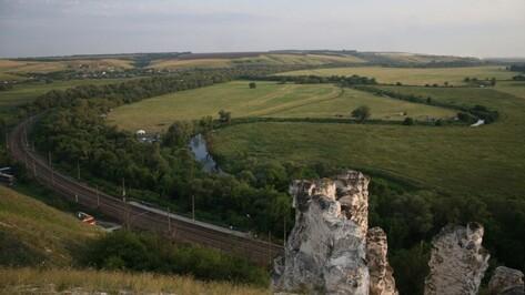 Туристические железнодорожные маршруты запустят в Воронежской области