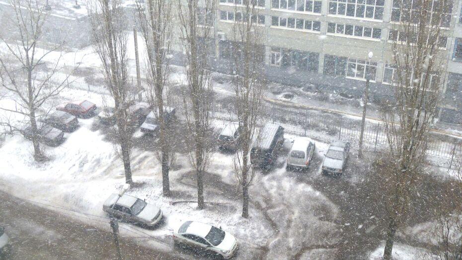 В Воронеже пошел первый снег этой весны