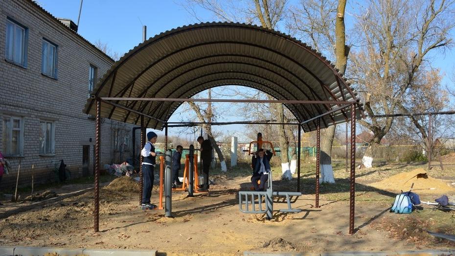 В воробьевском селе Мужичье установили уличные тренажеры возле Дома культуры