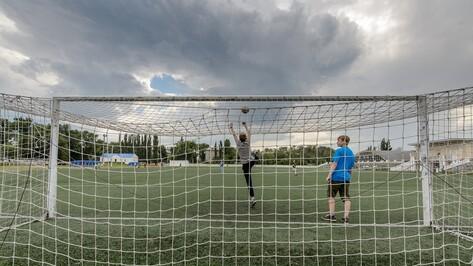 Власти выбрали подрядчика для реконструкции воронежских стадионов к ЧМ-2018
