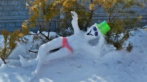 В семилукском селе провели конкурс снеговиков и необычных поделок из снега