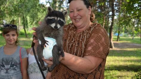 Воронежский воздухоплаватель подарил детскому театру зверей енота