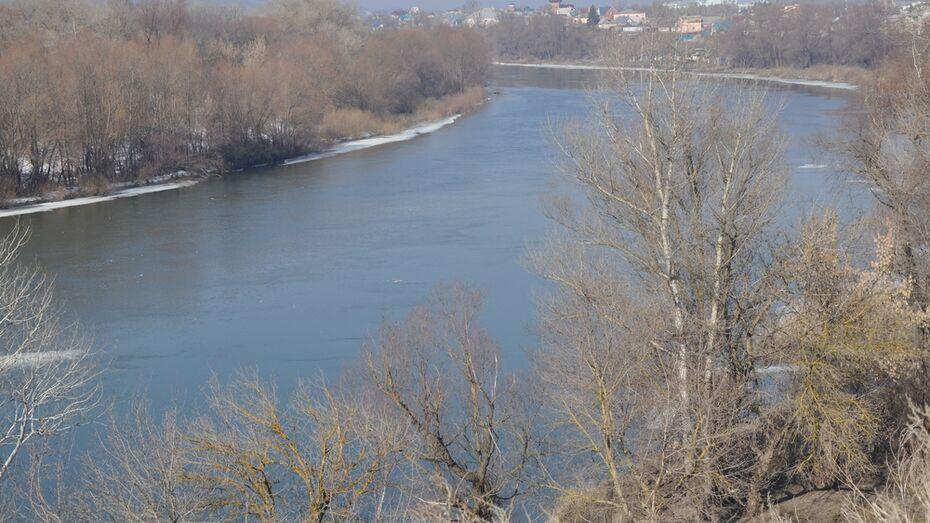 Дон в районе Павловска освободился ото льда