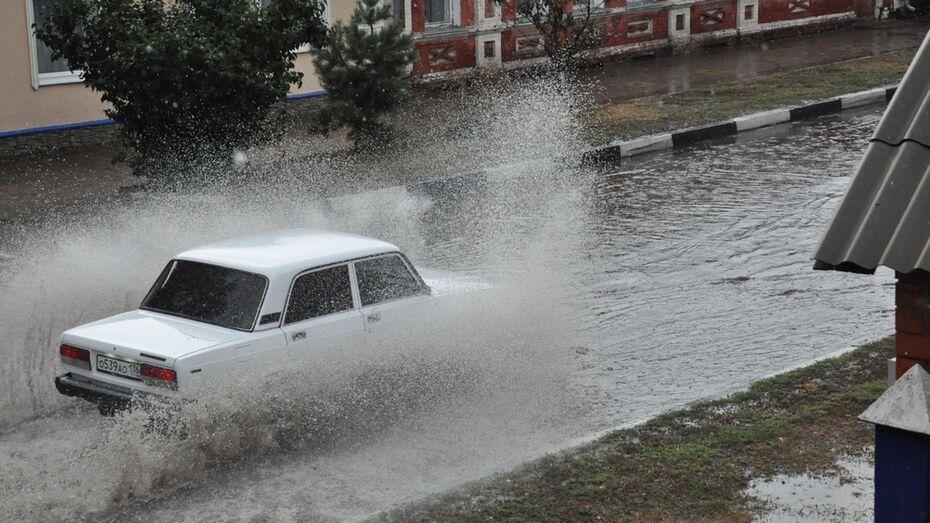 В Павловске выпало рекордное суточное количество осадков