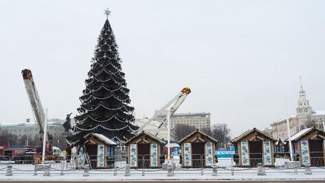 Власти Воронежа потратят до 1,7 млн рублей на установку новогодней елки