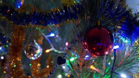 Губернатор и спикер облдумы поздравили воронежцев с Новым годом и Рождеством