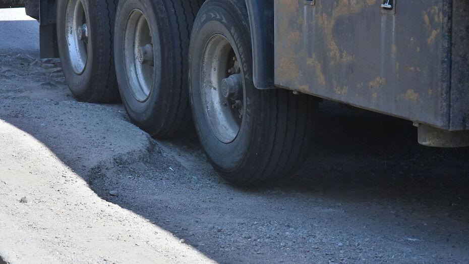 Дело о смертельном ДТП с грузовиком под Воронежем передали в суд