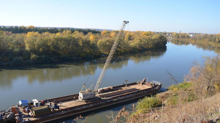 В Воронежской области начали укрепление разрушающегося берега Дона