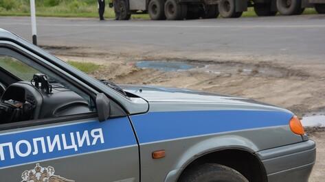 В Поворинском районе полицейские и налоговики остановили на дорогах 50 должников