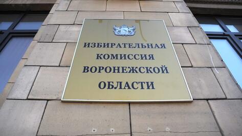 Половину территориальных избиркомов сформировали в Воронежской области