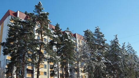 Синоптики предсказали продолжение температурных качелей в Воронеже на рабочей неделе