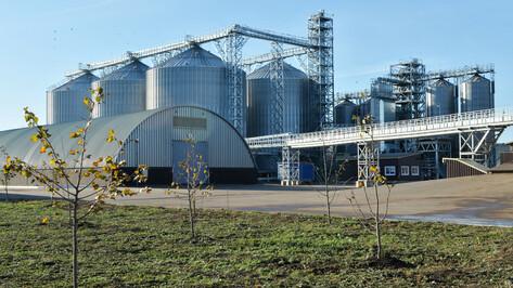 Воронежский губернатор анонсировал строительство завода по переработке зерна