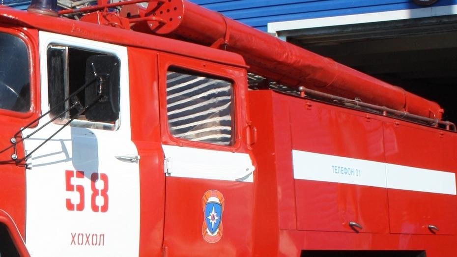 Под Воронежем при пожаре погиб 65-летний пенсионер