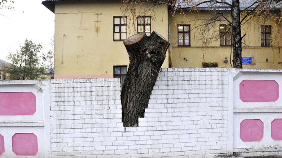 Воронежцы узнают, какие секреты хранят городские улицы