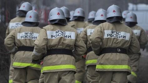 В Воронежской области потушили крупный пожар на Перелешинском заводе
