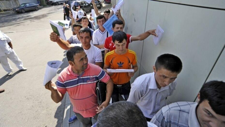 Миграция в Воронежской области превысила 10-летний рекорд