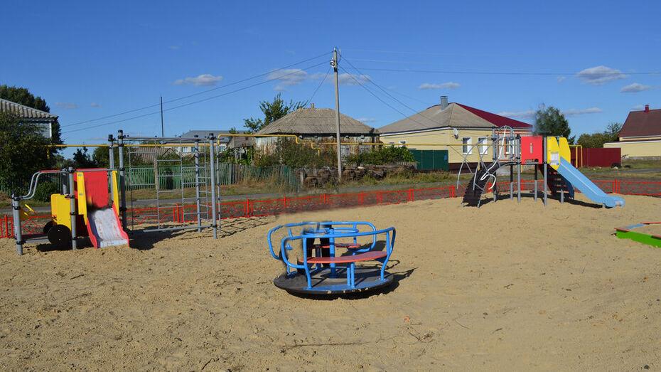 В лискинском селе Вознесеновка по инициативе общественников установили детскую площадку