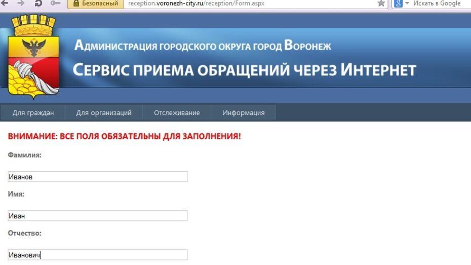 Пожаловаться на дорожные ямы и поломанные качели в Воронеже можно по Интернету