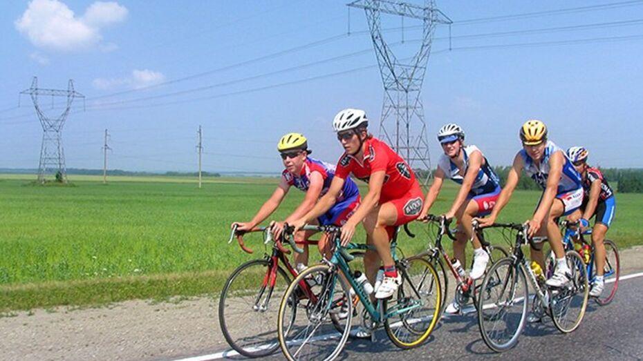 Студенты ульяновской сельхозакадемии приедут в Воронеж на велосипедах