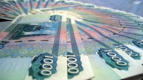 Правительство РФ выделило Воронежской области 224 млн рублей на повышение зарплат бюджетникам
