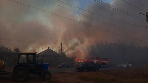 Дым от горящего камыша окутал райцентр Воронежской области