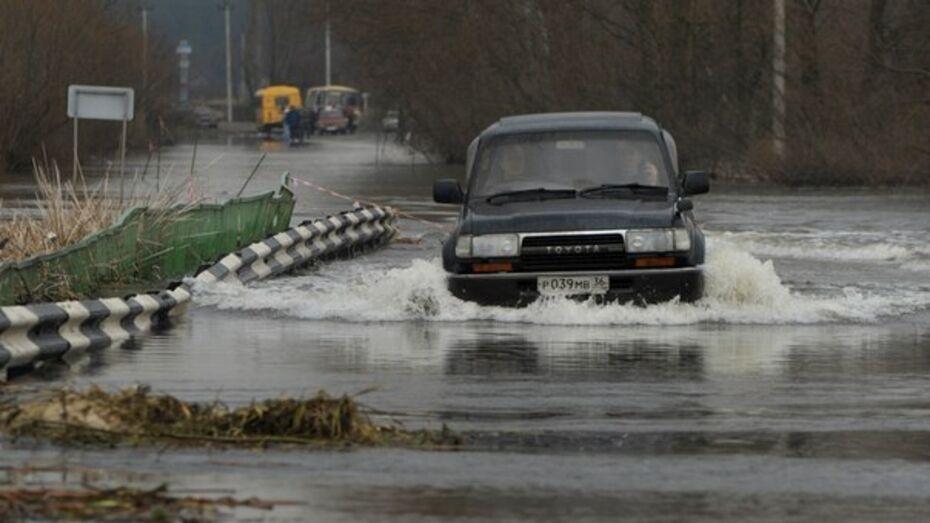 Дорожники подготовились к раннему паводку в Воронежской области