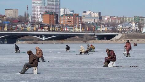В Воронежской области ввели ограничения на ловлю 16 видов рыб