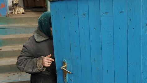 Уборка, поездки и лекции. Воронежские волонтеры озвучили программу поддержки пенсионеров