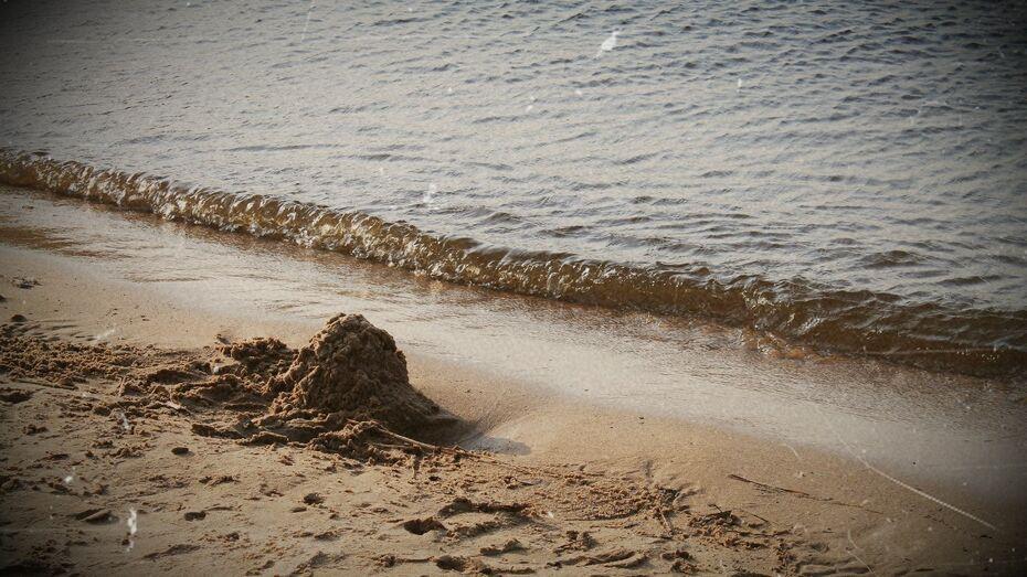 Санитарные врачи запретили воронежцам купаться в трех местах