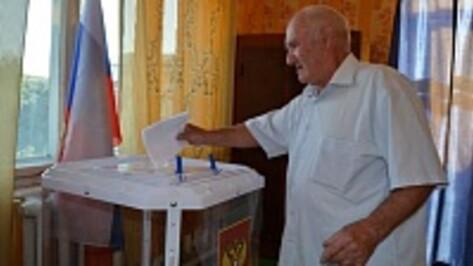 В Нижнедевицком районе за Алексея Гордеева отдали свои голоса 94,99% избирателей