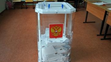 В борьбе за мандат депутата Воронежской облдумы определились два лидера