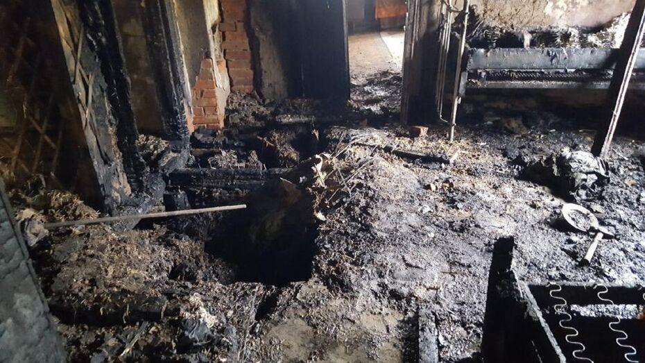 Хозяйка дома и ее гость насмерть угорели в Воронежской области