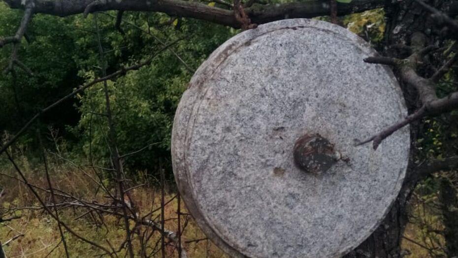Висящую на дереве мину обнаружили жители рамонского села Большая Верейка