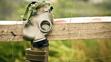 В Воронежской области замерили радиацию из-за пожара в Чернобыле