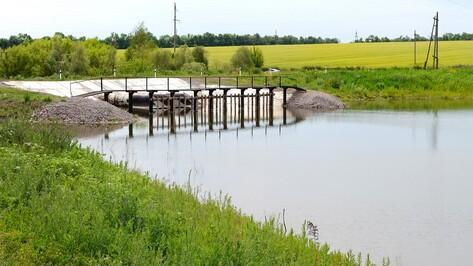 В семилукском селе из-за дождей наполнился осушенный пруд