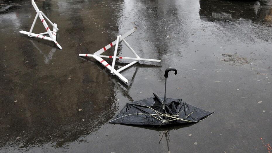 Метеорологи предупредили воронежцев о сильном ветре 7 апреля